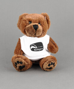 TOYECC - St John Ambulance Badger Cuddly Bear