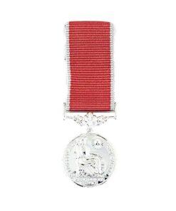 TOYECC - BEM Miniature Medal
